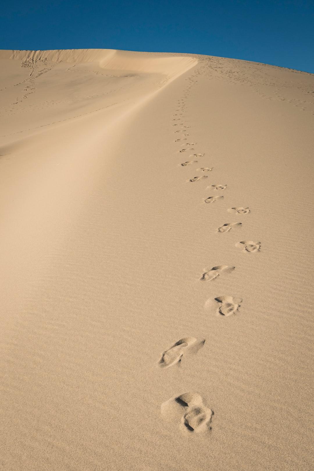 footprints along the sandhills, Eureka Sand Dunes, California