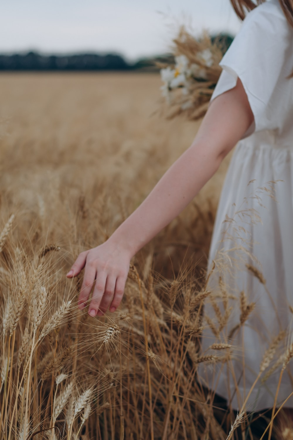 woman in white dress holding brown wheat