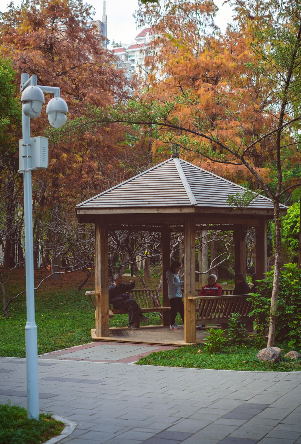 brown wooden gazebo near trees during daytime