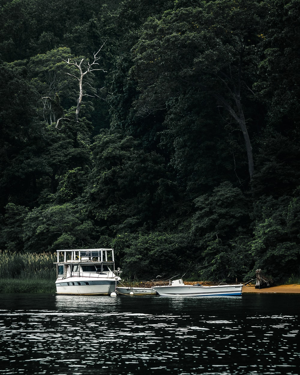 white and brown boat on river during daytime