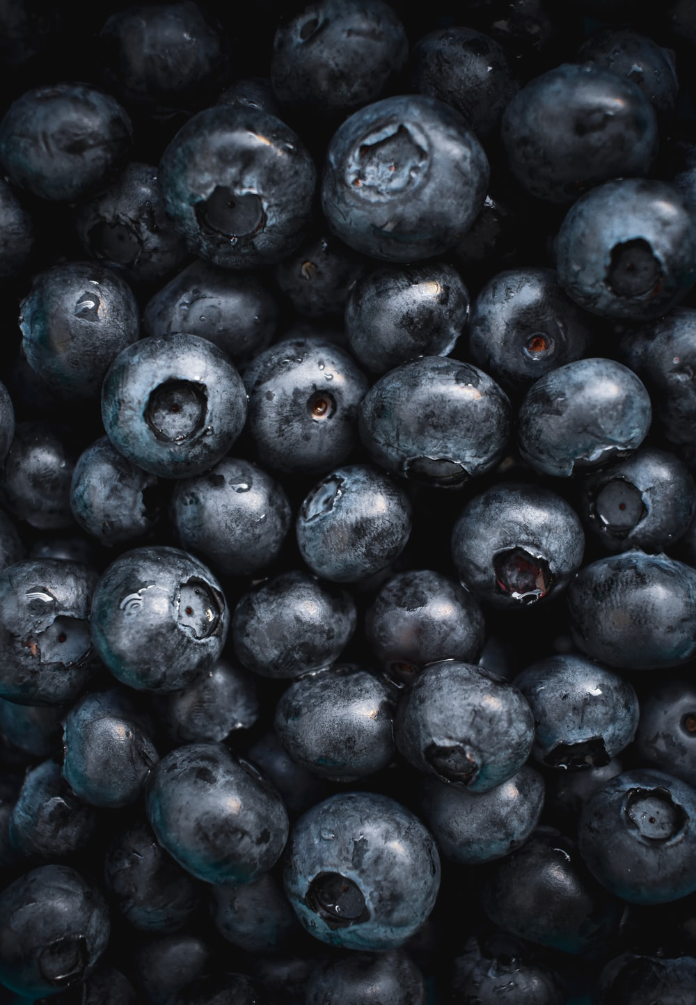 black round fruits in close up photography