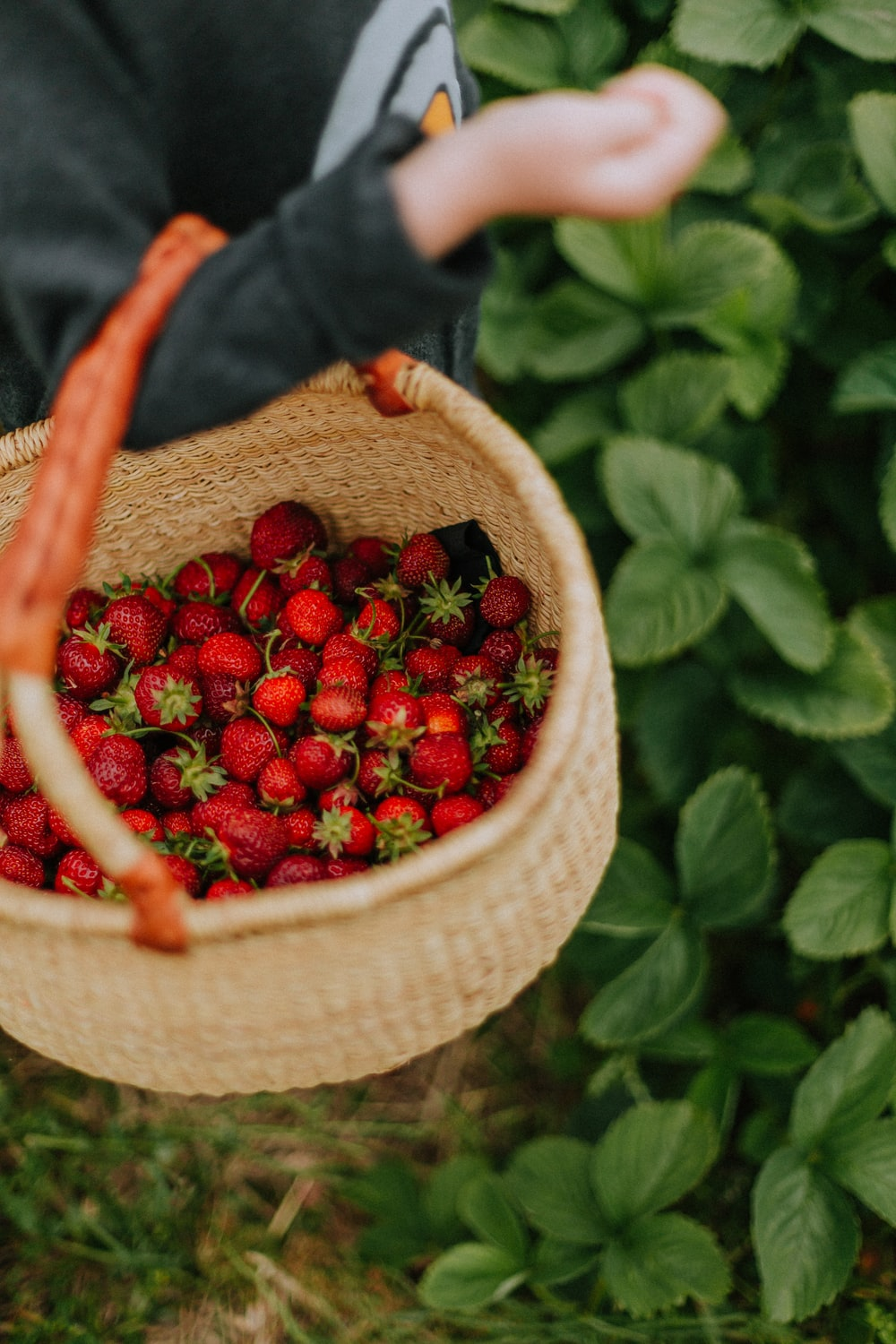 red strawberries in brown woven basket