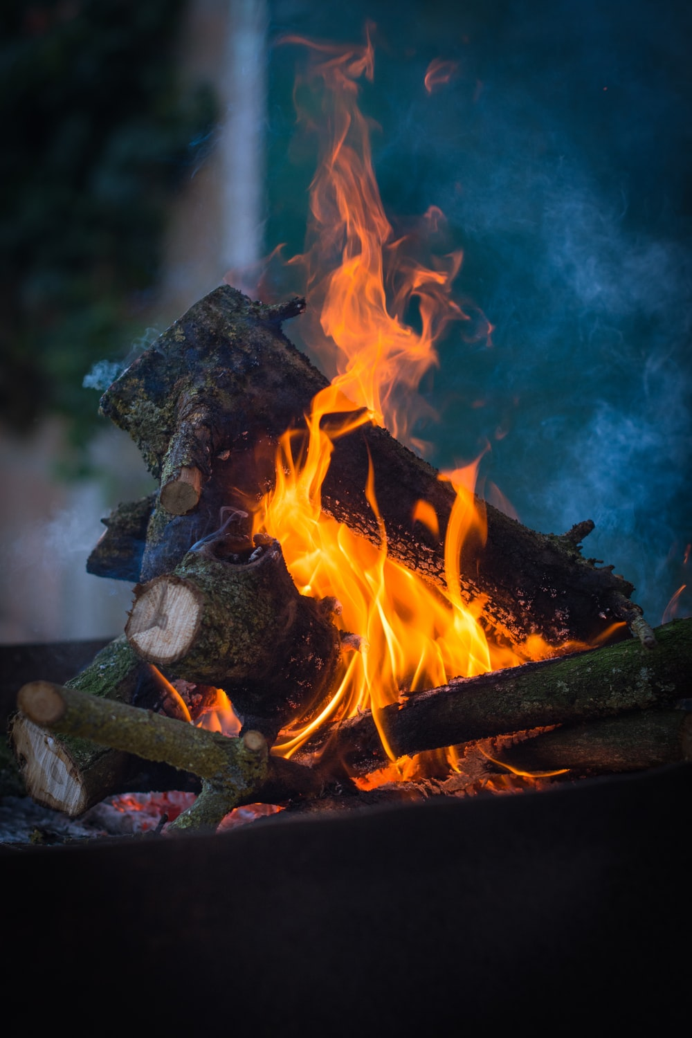 burning wood on fire pit