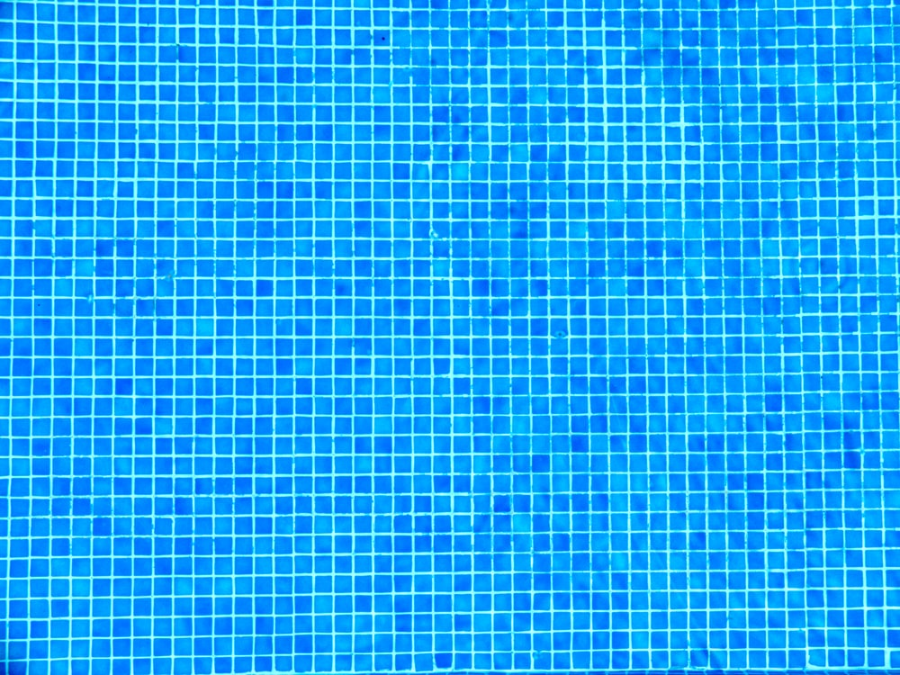 blue and white checkered textile