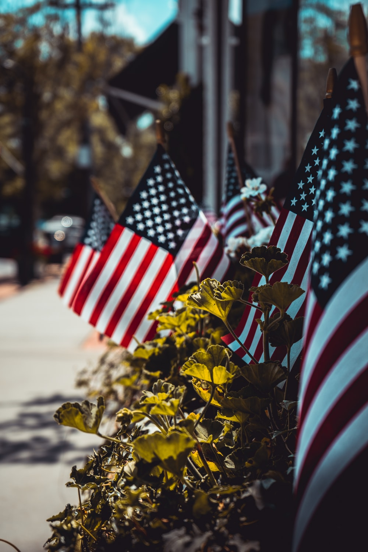 us a flag on brown tree