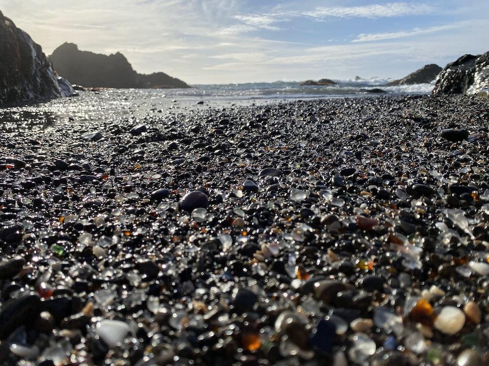 black and white stones on seashore during daytime