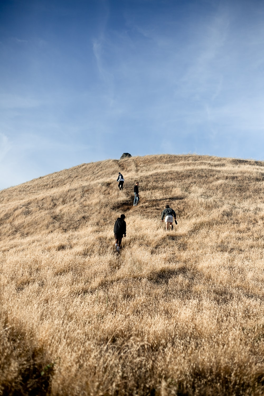 2 men walking on brown grass field during daytime