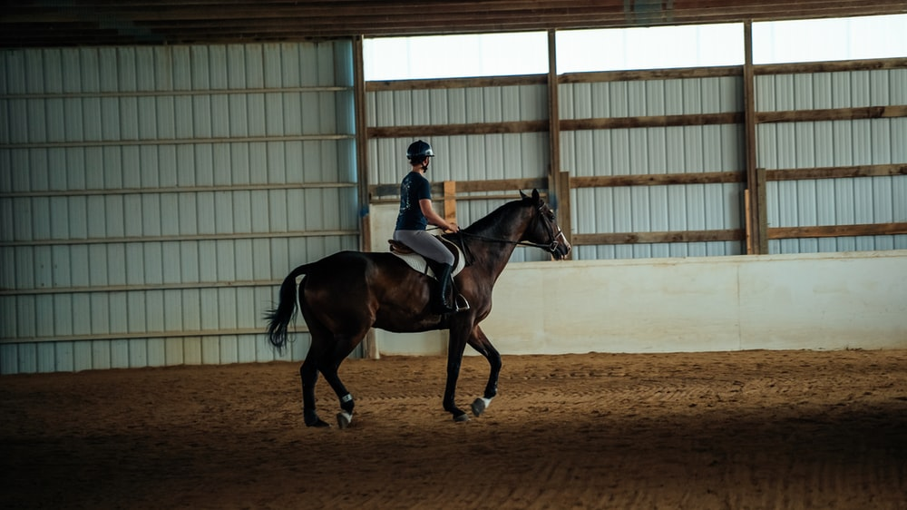 man in black jacket riding brown horse