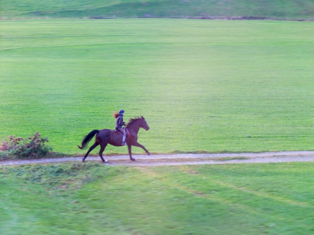 Всадница на лошади скачет галопом вдоль железнодорожного полотна *** Young rider on horseback galloping along the railroad tracks *** Eine junge Reiterin galoppiert entlang der Eisenbahn