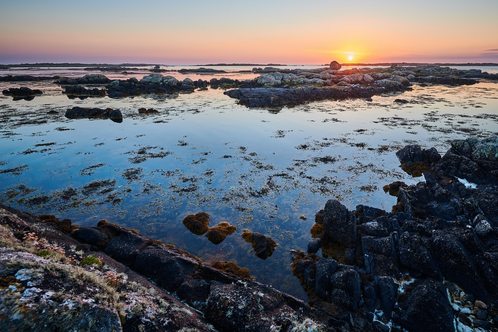 rocky shore with rocks on water during sunset