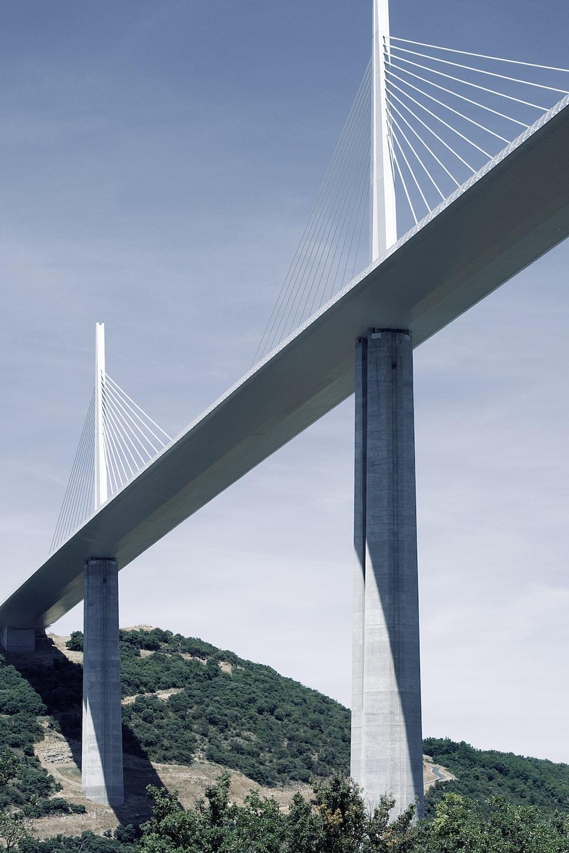 white bridge under blue sky during daytime