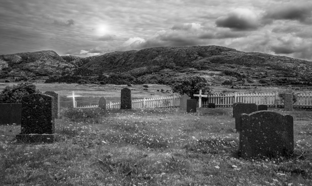 grayscale photo of wooden fence on grass field