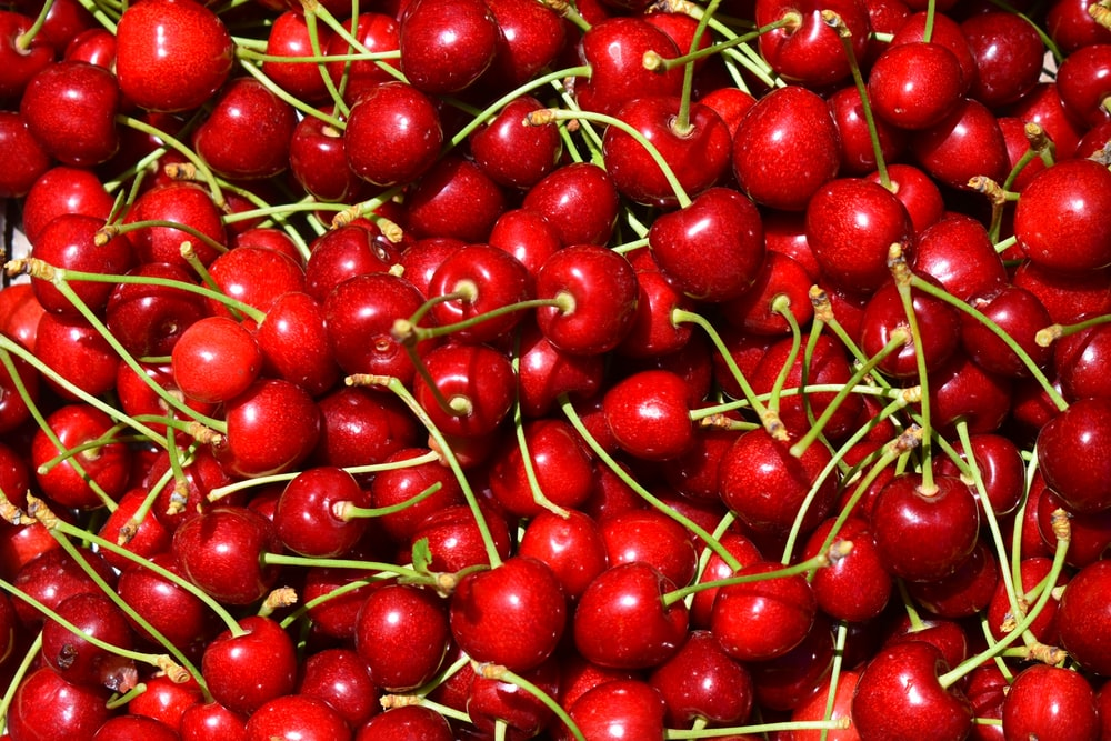 red cherry fruit on white ceramic plate
