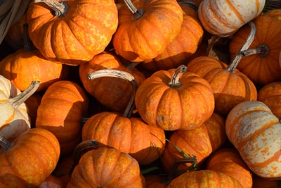 orange pumpkins on brown wooden table pumpkin teams background