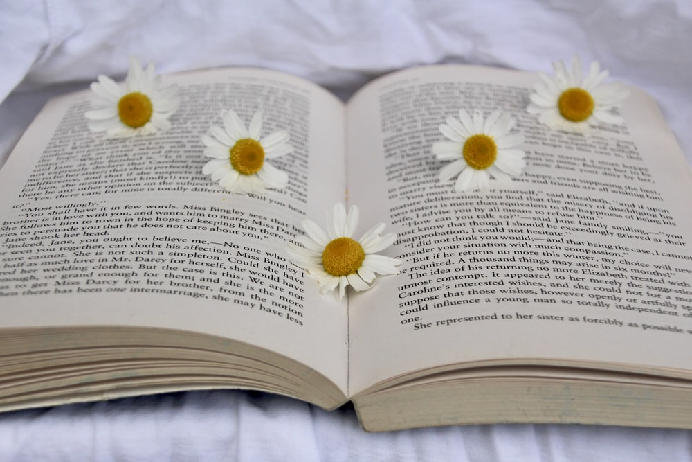 white flower on book page