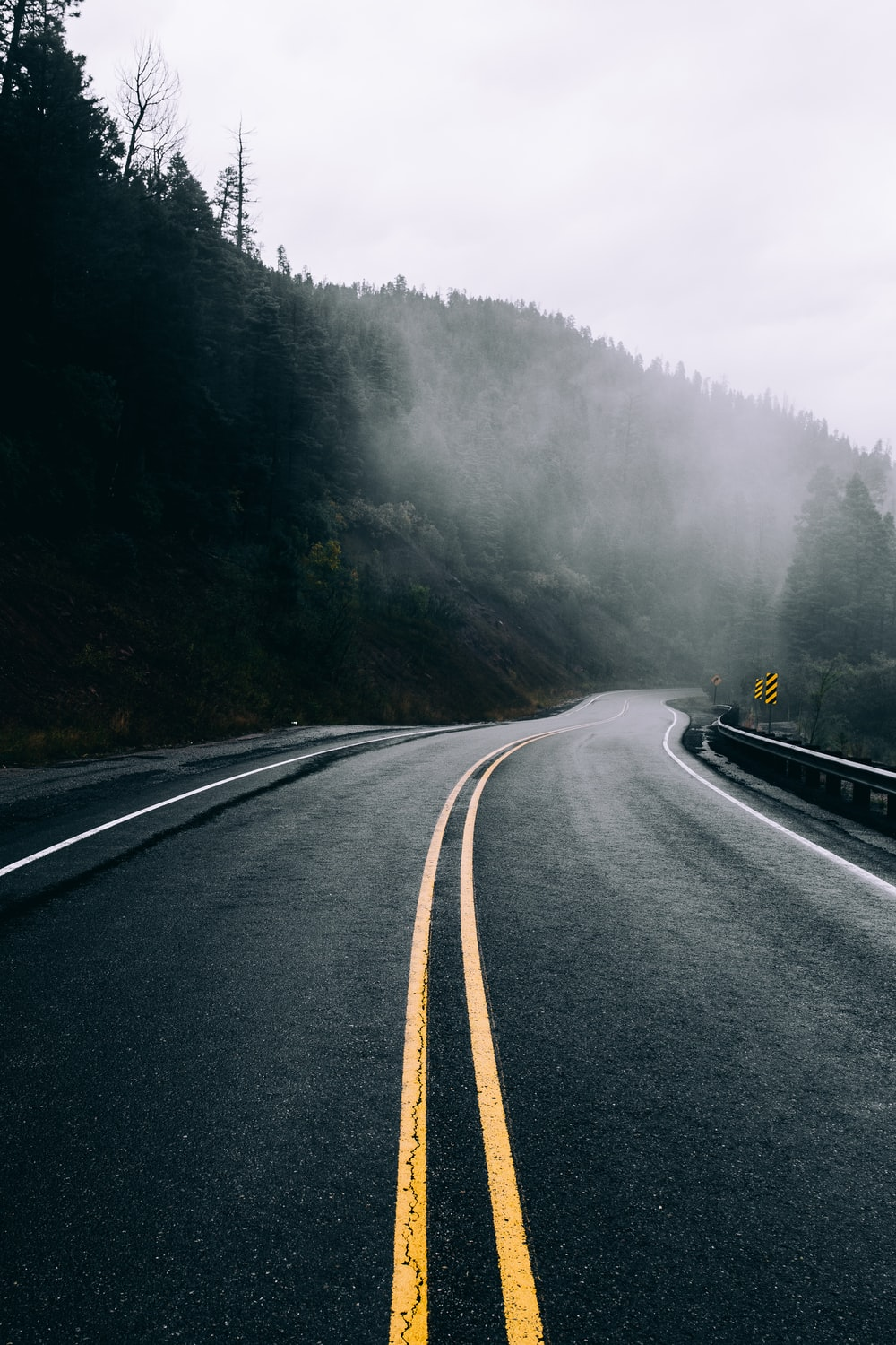 black asphalt road between green trees covered with fog during daytime