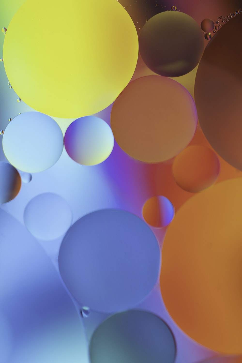 red and yellow balloons in close up photography