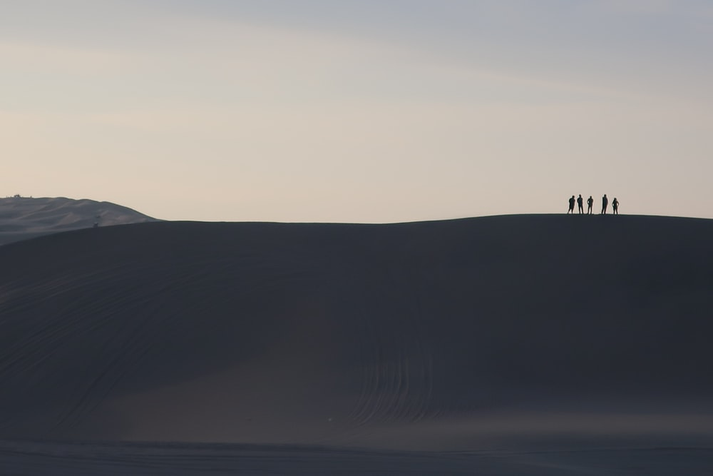 silhouette of 2 people standing on hill during daytime