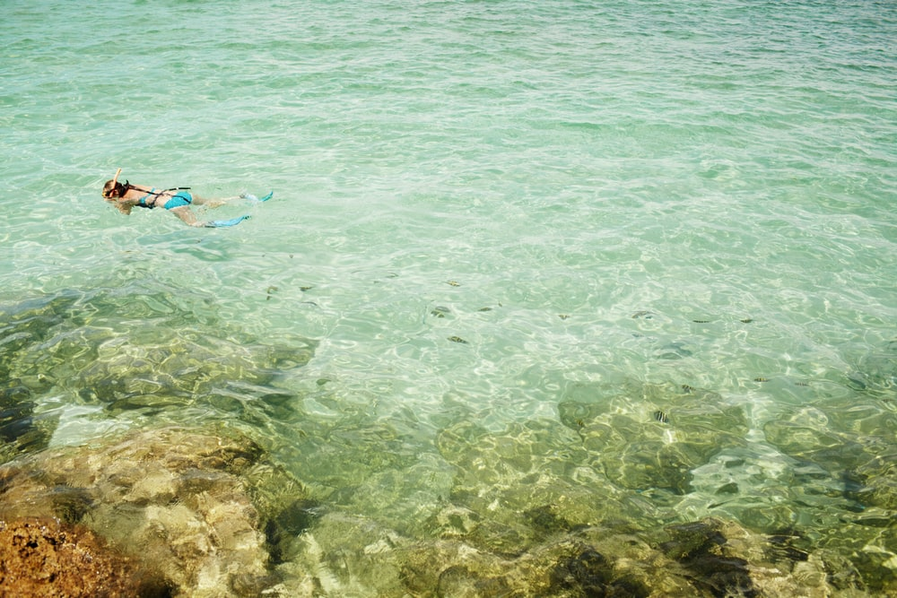 person in blue shorts swimming on sea during daytime