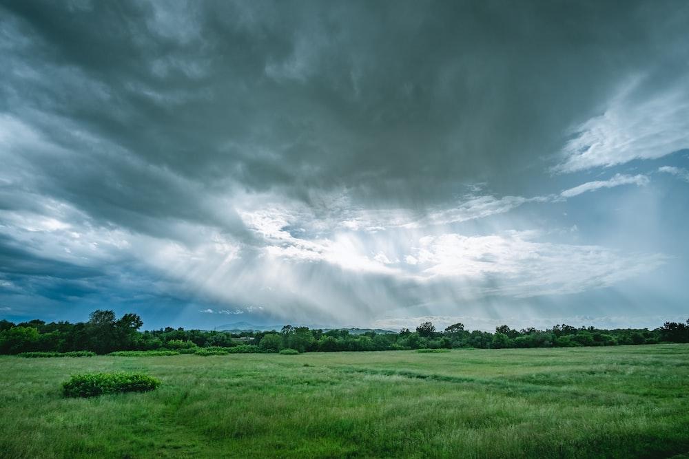 green grass field under gray clouds