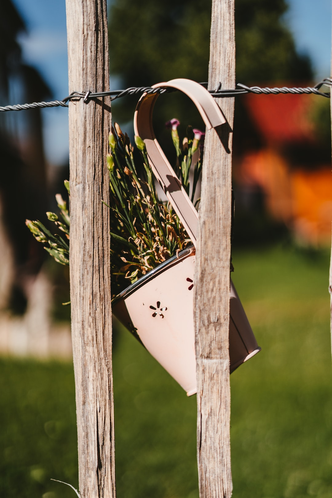 Small flower pot behind wooden fence
