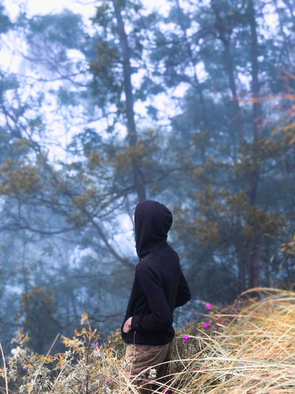 person in black hoodie standing near brown trees during daytime