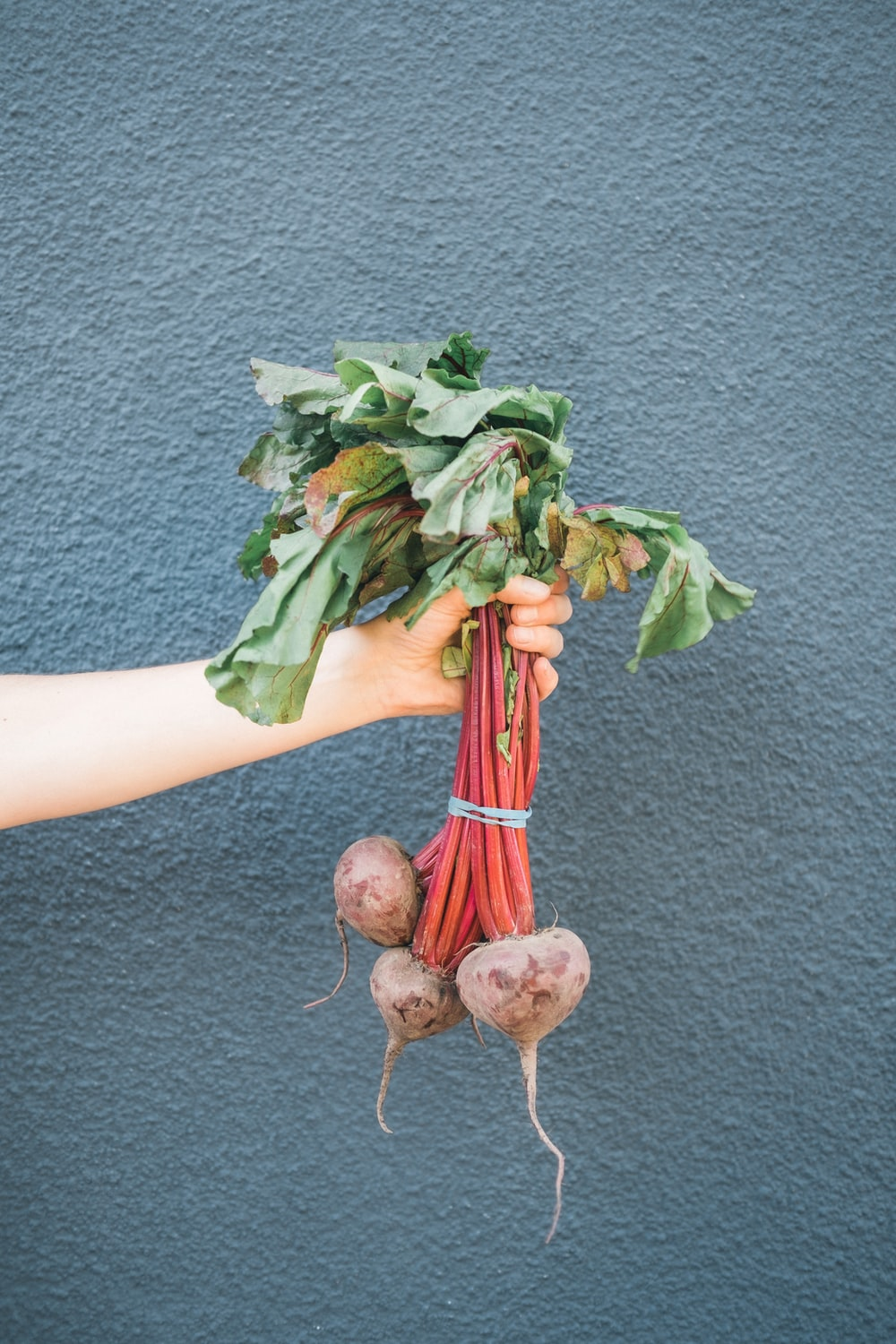 person holding green and brown vegetable