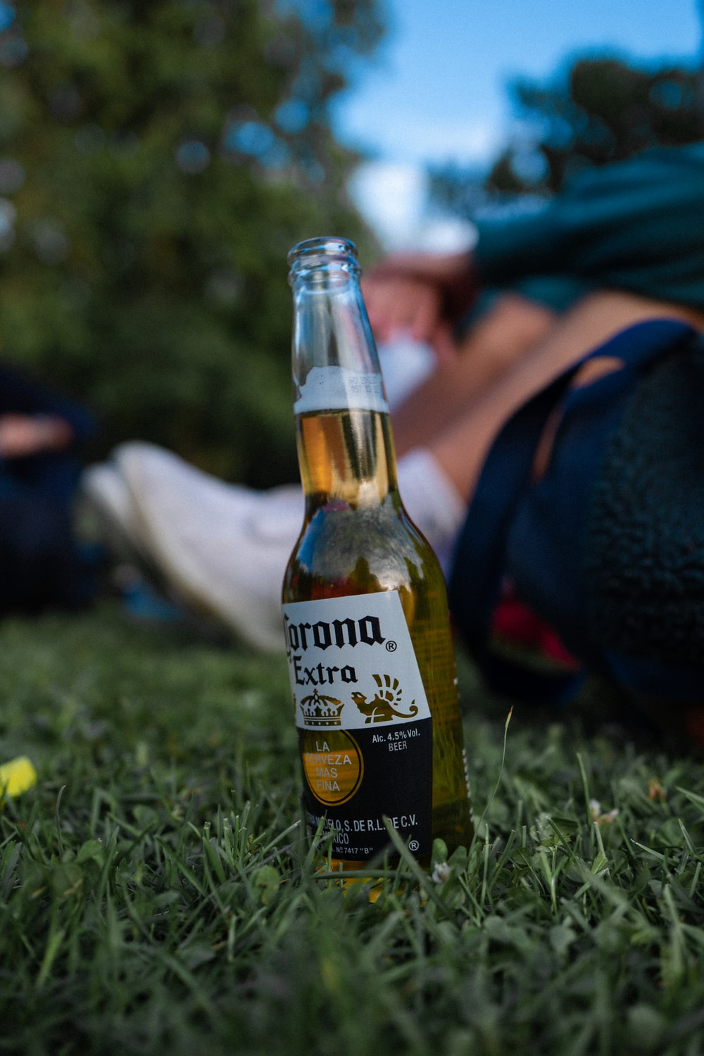 corona extra beer bottle on green grass