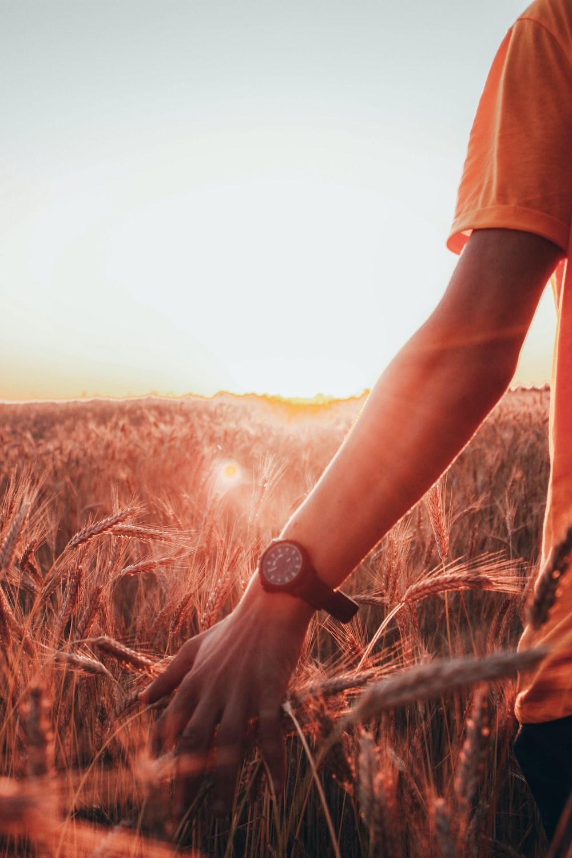 person in orange t-shirt wearing black watch standing on brown grass field during daytime