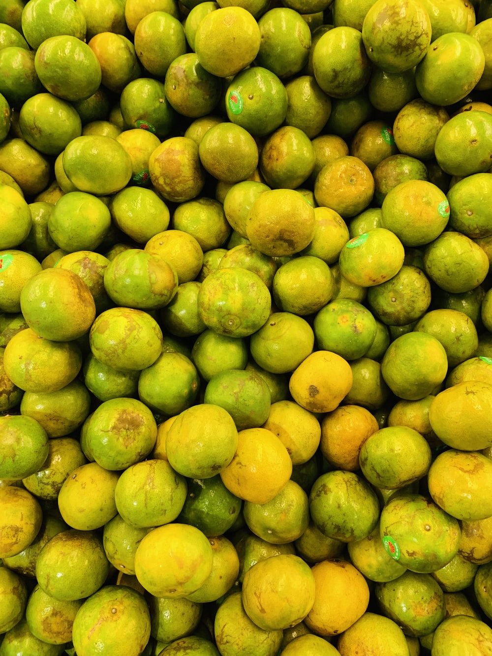 yellow and green oval fruits