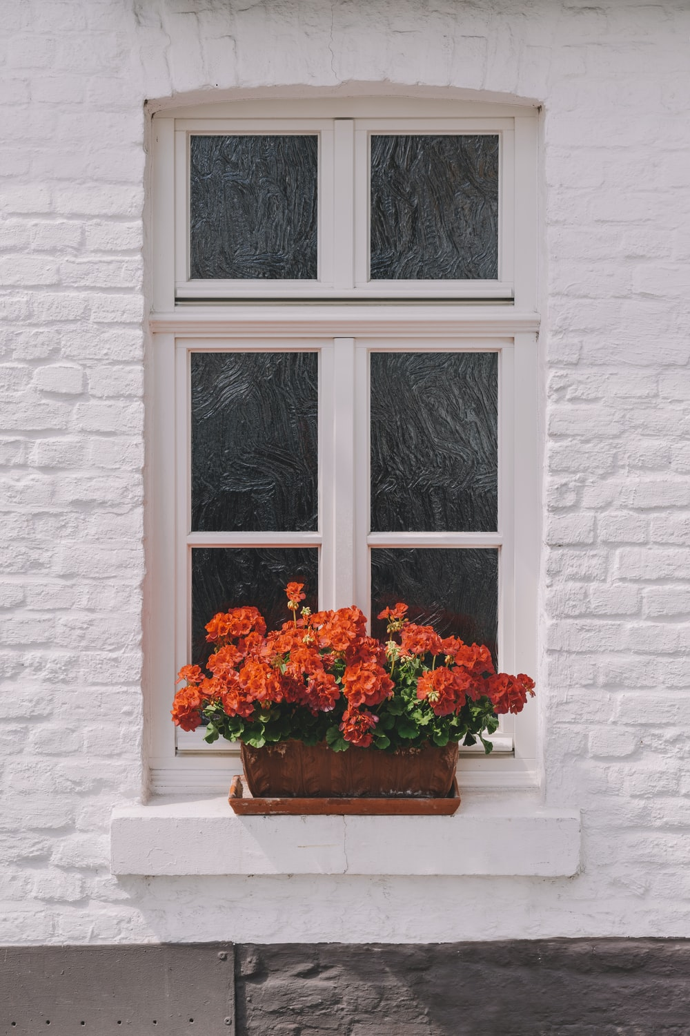 red flowers on white window
