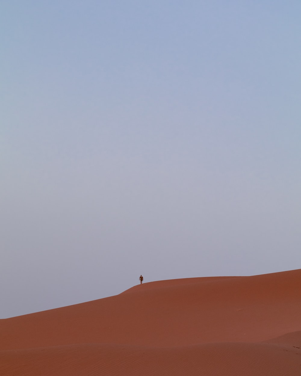 person standing on brown sand under gray sky during daytime