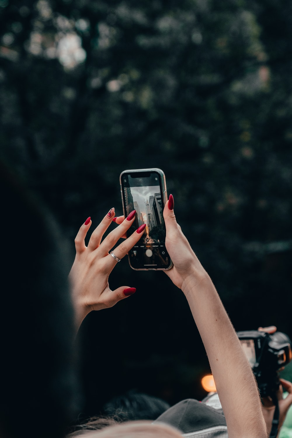 person holding iphone 6 taking photo of trees during daytime