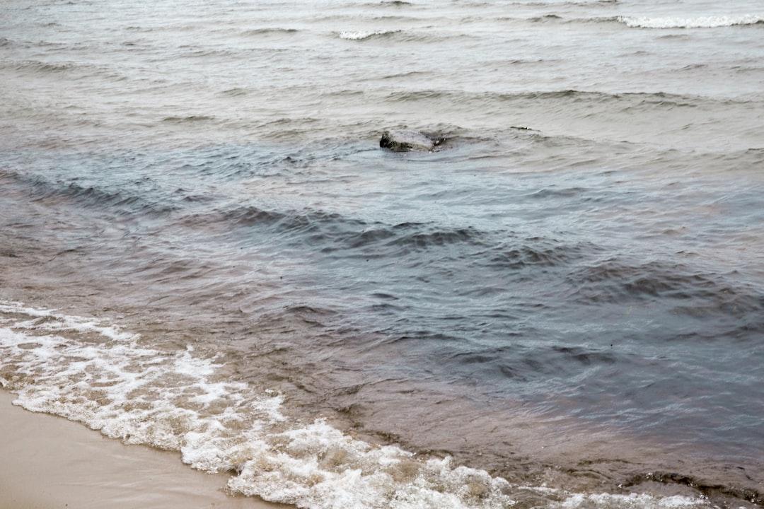 Sandy shore of the lake in Karelia