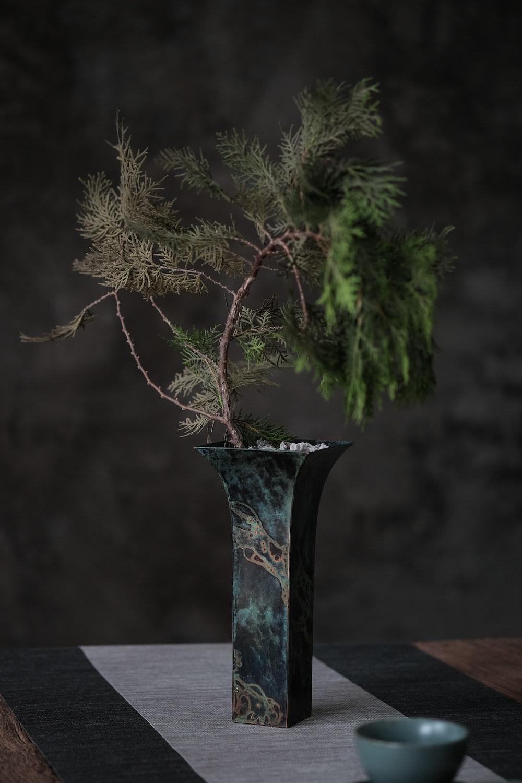 green and brown tree in black ceramic vase