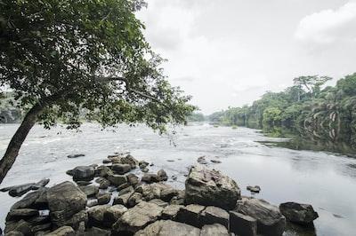 brown rocks near body of water during daytime gabon zoom background