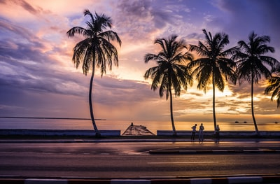 silhouette of palm tree near body of water during sunset gabon zoom background