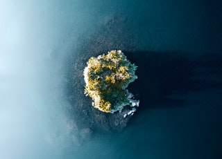 green and brown island in the middle of blue sea