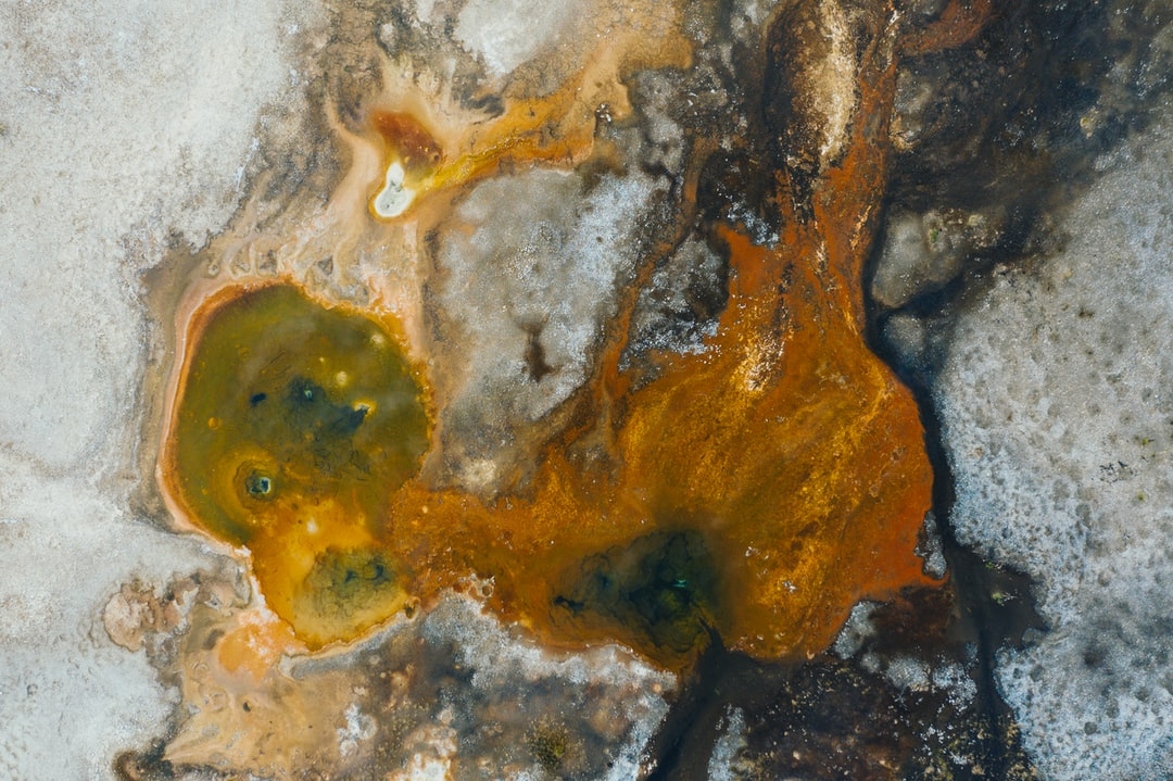 First set of photos from my visit to Yellowstone National Park in 2020. I loved the beautiful oranges and browns in this thermal pool and for some reason one of those features looks like a fish eye to me...what do you see?