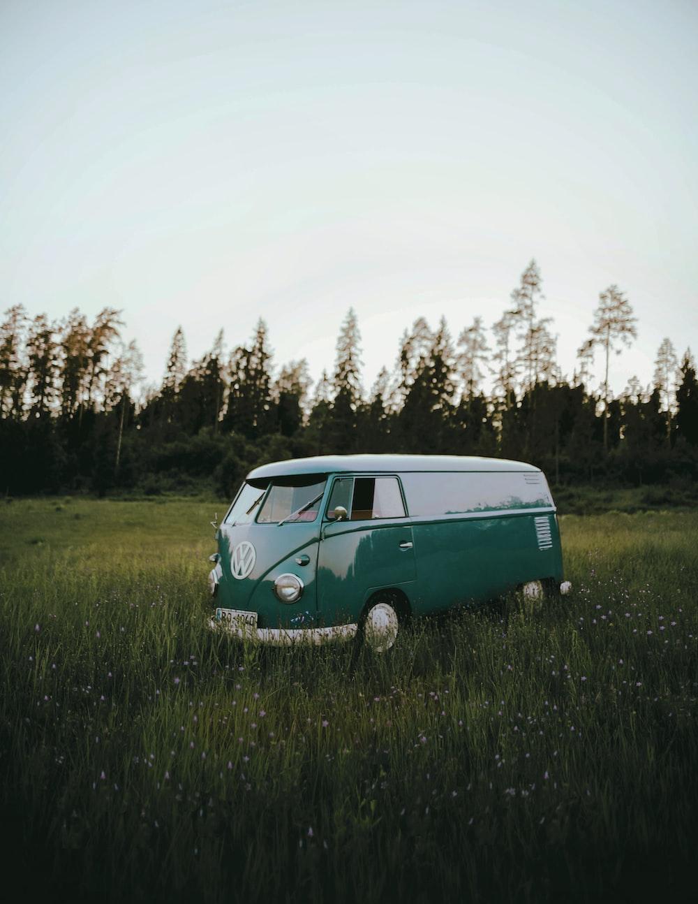 blue volkswagen t-2 on green grass field during daytime