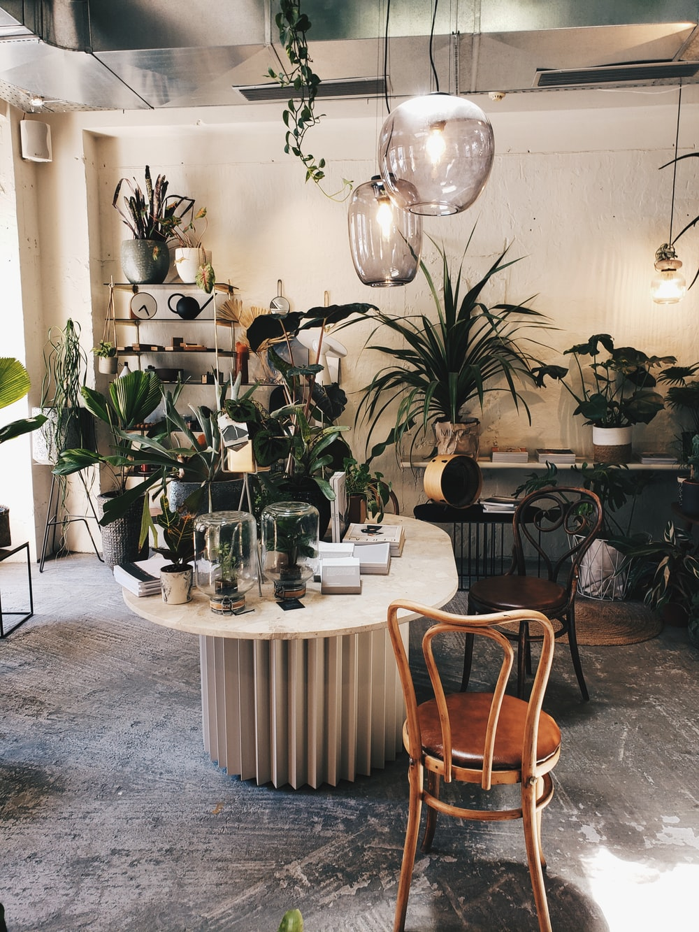 green potted plant on white round table