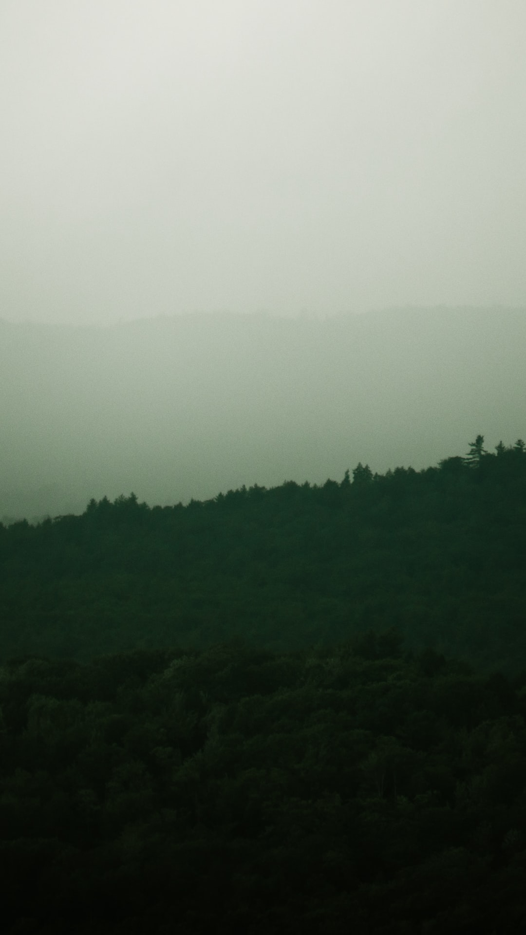 Misty mountainscape with trees silhouetted.