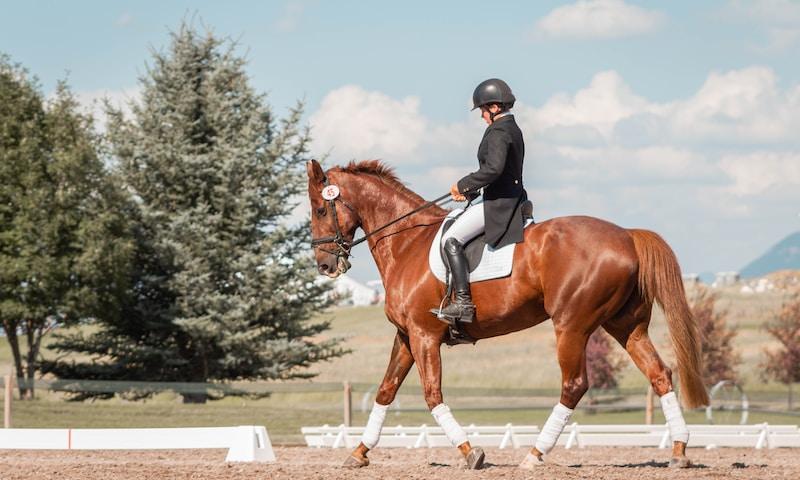 3 éléments indispensables quand on pratique l'équitation ?