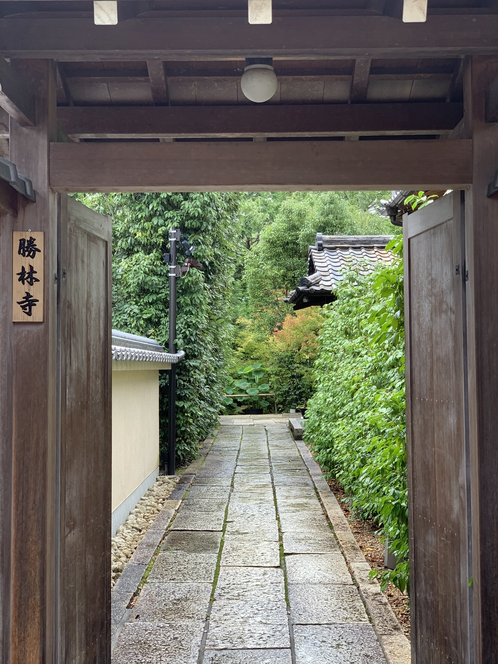 brown wooden pathway between green plants during daytime