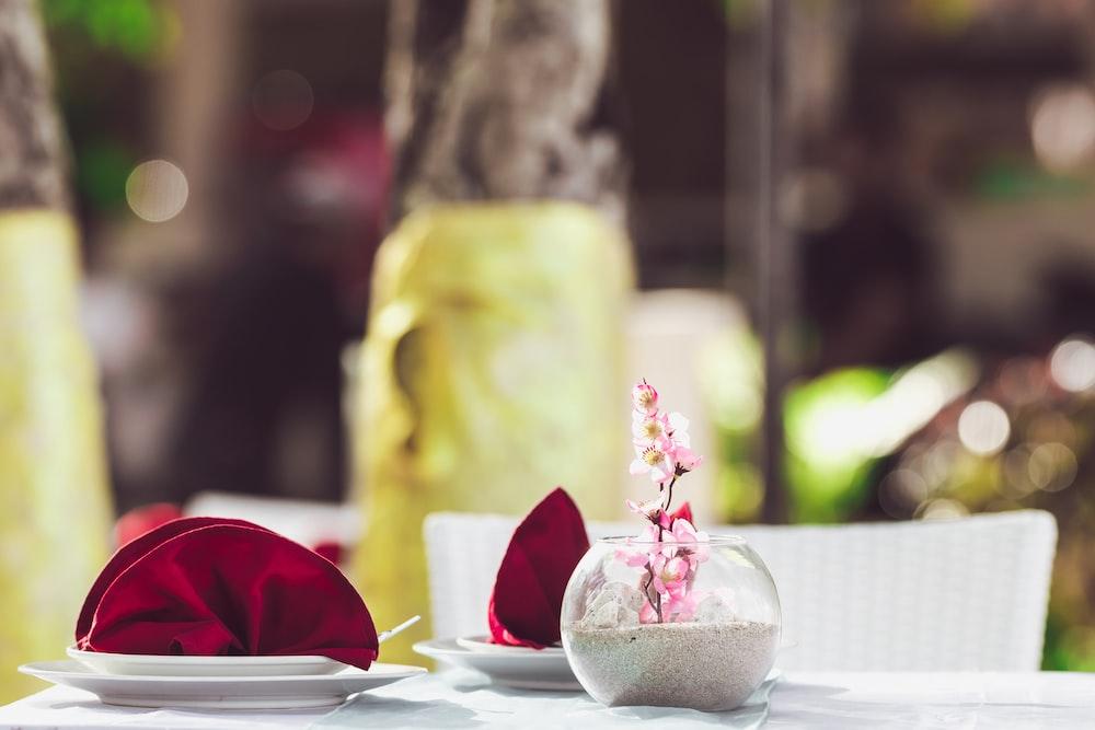 red rose on white ceramic plate