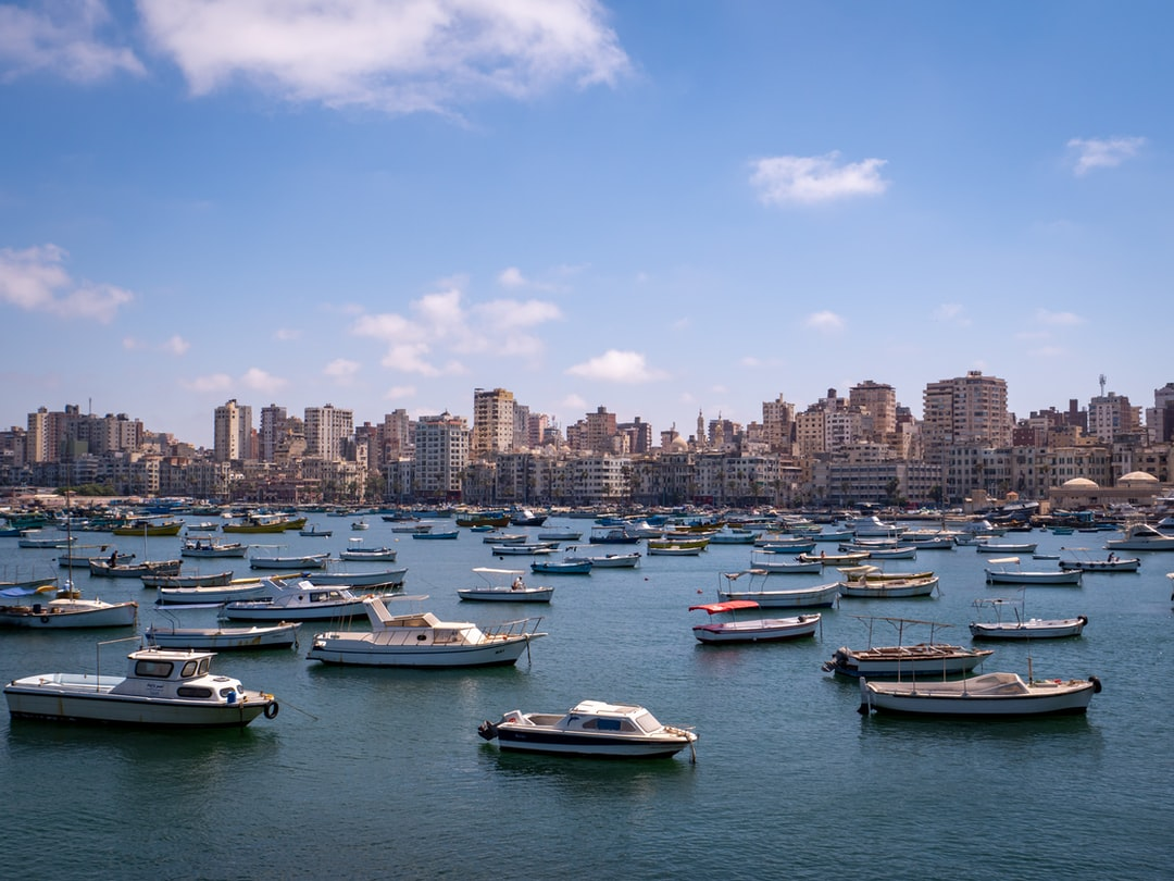 the harbour with many boats and skyline of alexandria - view from the citadel