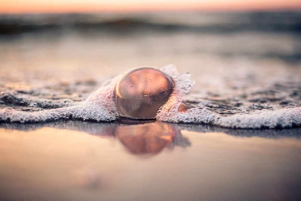 brown and white round ornament on brown sand