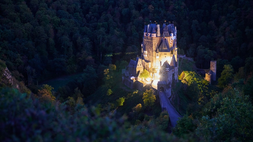brown concrete castle in the middle of forest