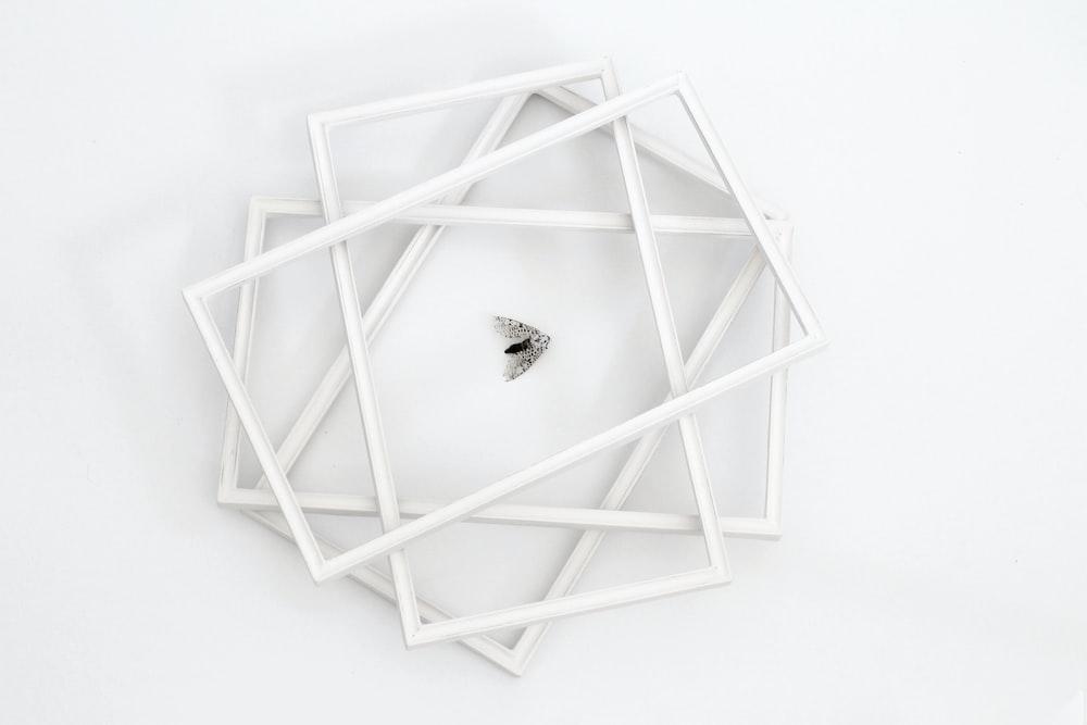 black bug on white wooden frame