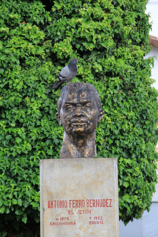 black bird on white concrete statue